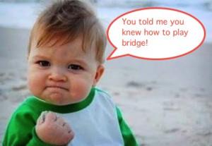 funny bridge baby and quote