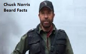 Related Pictures cod4 based on chuck norris quotes tek9 networks