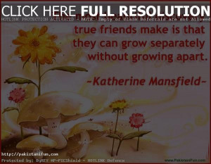 Best Friendship Quotes HD Wallpapers Images