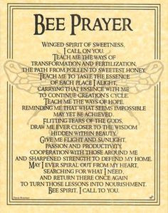 Book of Shadows BEE Totem Poem Prayer Page Poster BOS by Travis Bowman ...