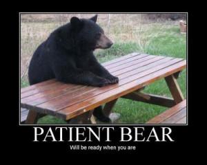 Funny Bears (22)