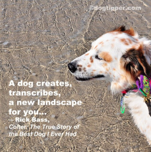 dog creates, transcribes, a new landscape for you… ~ Rick Bass ...