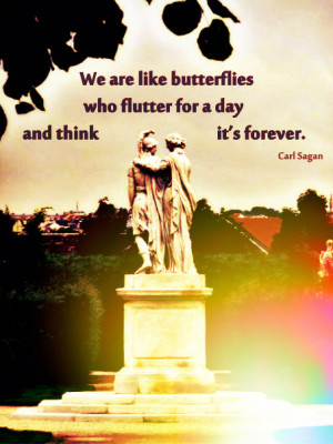 We are like butterflies who flutter for a day and think it's forever.