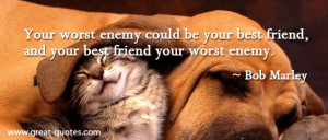 """... And Your Best Friend Your Worst Enemy """" - Bob Marley ~ Sarcasm Quote"""