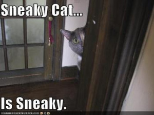 Are you sneaky?