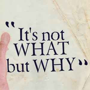 Quotes Picture: it's not what but why