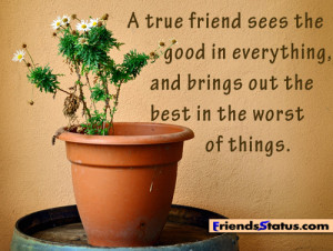 true friend sees the good in everything