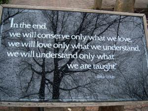 Good teacher quote!!!