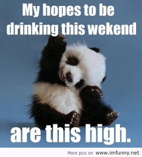 Weekend Breaks Funny Quotes...