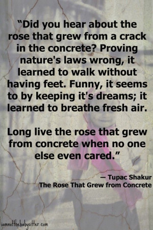 Tupac Quote – The Rose That Grew From Concrete.