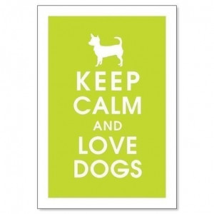 obligatory keep calm quote remember to check us out www olliediggs com ...