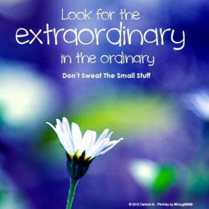 ... for the extraordinary in the ordinary.Don't sweat the small stuff