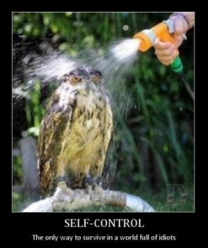 demot+9 Weekly Stress Relief Funny Quotes, 28 January 2013