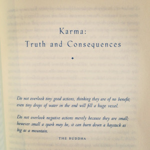 Buddha Quotes On Karma #2