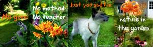 Cat Wisdom Quotes