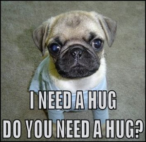 need a Hug,Do you need Hug?