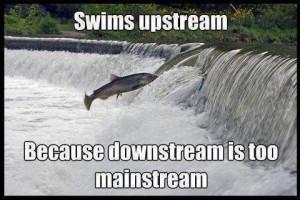 Swim upstream picture quotes image sayings