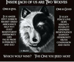 faith grandson minute grandfather wolf wins cherokee replied feed