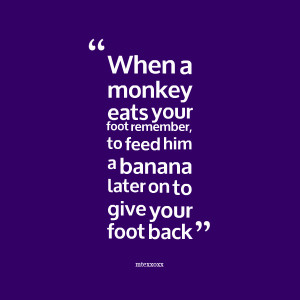 Quotes Picture: when a monkey eats your foot remember, to feed him a ...