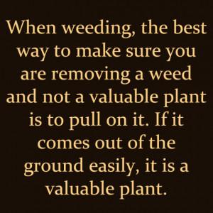 Gardening Quotes - Plants Vs. Weeds