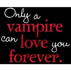 Vampire Love Twilight Hoodie (dark) - CafePress
