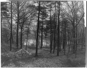 ... , in a house which I had built myself, on the shore of Walden Pond