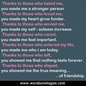 The meaning of friendship quotes