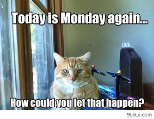 Today is Monday again large Funny Pictures, Funny Quotes, Funny Videos ...