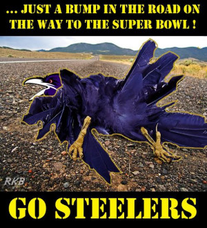 Hate the Ravens