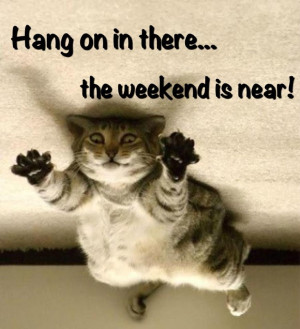 happy friday quotes funny friday quotes