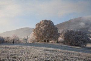 The Malvern Hills, photographed from the Common, by Alec Beattie.