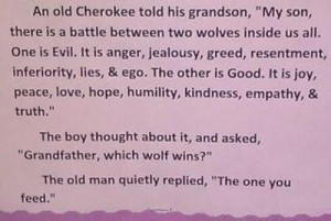 An old Cherokee told his grandson,