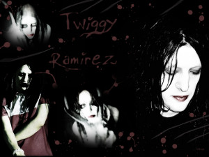 Twiggy Photo Pics Wallpaper
