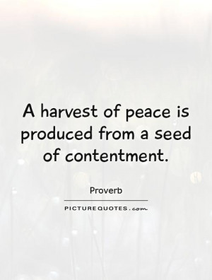 Peace Quotes Contentment Quotes Proverb Quotes Harvest Quotes