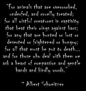 albert schweitzer quotes animals