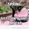 Funny and Cute Spring Quote 2014 2015 funny image