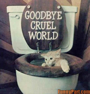 funny-pictures.feedio.netFarewell Quotes Funny Farewell Quotes ...