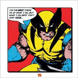 Wolverine Bildnr.: 28528