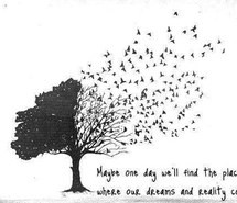 birds, black, black and white, day, dream, dreamer, english quotes ...