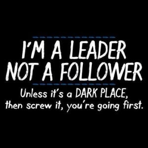 Leader, not a Follower...
