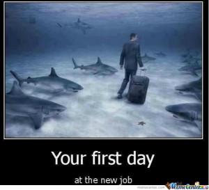 New Job...