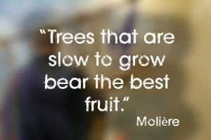 ... that are slow to grow bear the best fruit."