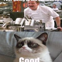Angry Gordon Ramsay Quotes Quotesgram