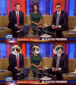Fox News reactions to Obama re-election: Grumpy Cat remix.