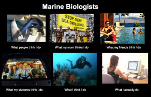 Title: Marine Biologists. Series of 6 photos with captions