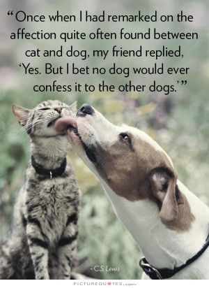 Quotes About Cats And Friendship Cat Friendship ...