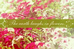Beautiful Spring Pictures With Quotes {quote} the earth laughs in