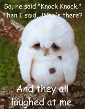 Cute Funny Animal Quotes