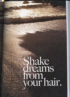 shake dreams from your hair. I'm pretty sure disney princesses can do ...