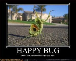Happy Bug | Source : Very Demotivational - Posters That Demotivate Us